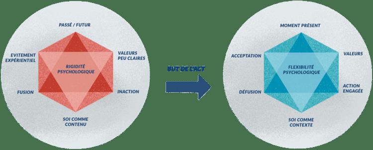 Qu'est ce que l'ACT ou «thérapie d'acceptation et d'engagement» ?